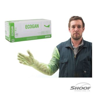 Gloves Exam Genia Ecogan (Green) 100pk