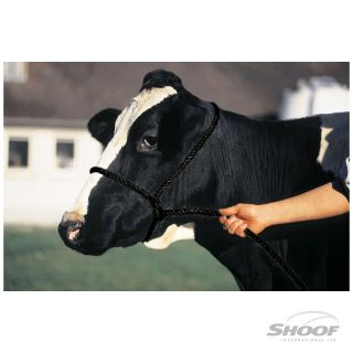 Halter Poly Rope Calf Black