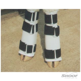 Leg Splint Ozland Calf each